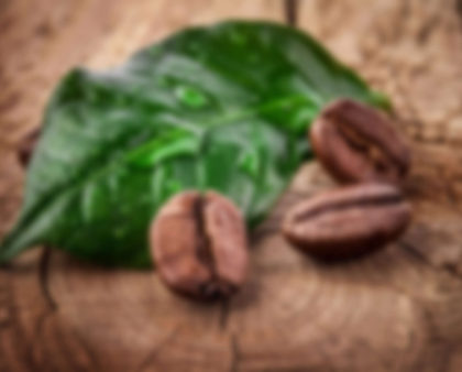 Which Country Are Coffee Beans Originally From?